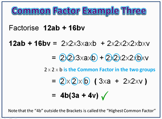 Factorising Greatest Common Factor 9