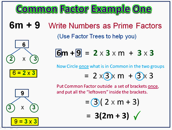 Factorising Greatest Common Factor 7