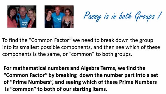 Factorising Greatest Common Factor 2