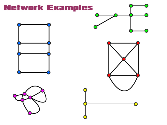 Mathematical Networks Five