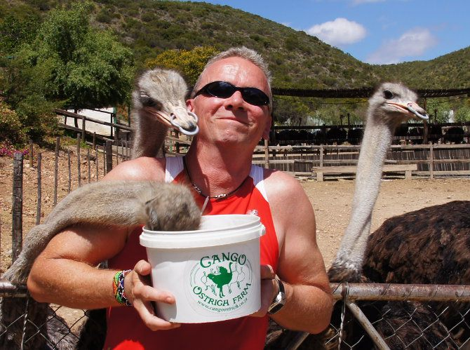 PW Africa Trip Passy Feeds Ostriches