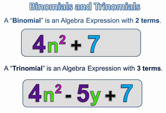 Algebra Expressions and Terms 5