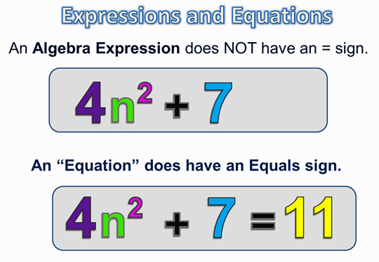 Algebra Expressions and Terms 6