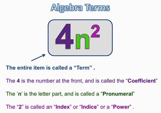 Algebra Expressions and Terms 2