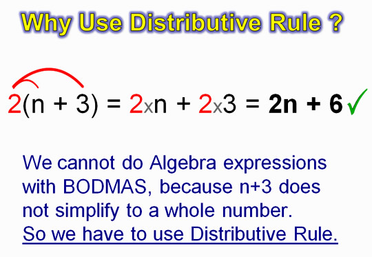 Distributive Property 8