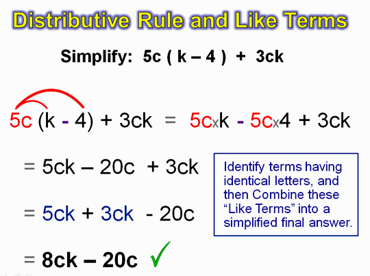 Distributive Property 15
