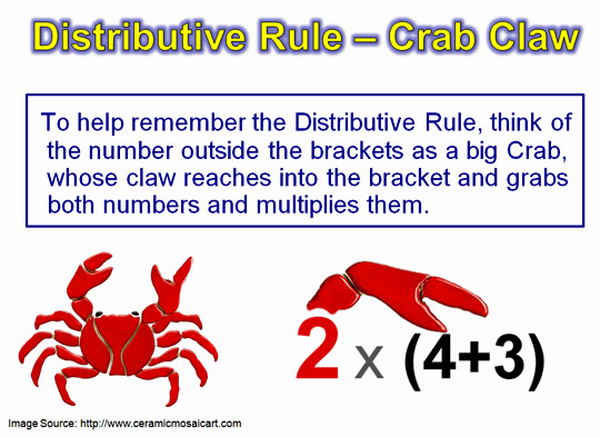 Distributive Property 7