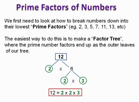 Algebra Dividing 1
